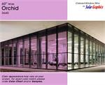 Orchid Window Film